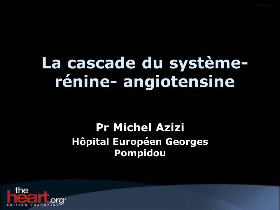 La cascade du système- rénine- angiotensine Pr Michel Azizi Hôpital Européen Georges Pompidou