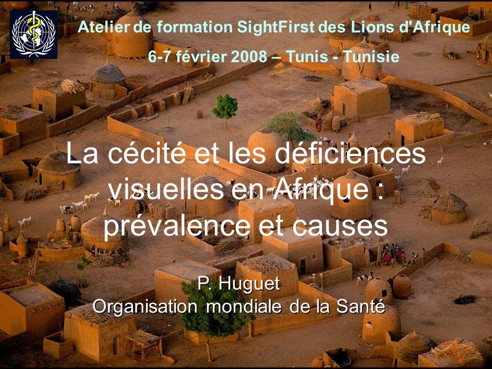 1 La cécité et les déficiences visuelles en Afrique : prévalence et causes P. Huguet Organisation mondiale de la Santé Atelier de formation SightFirst
