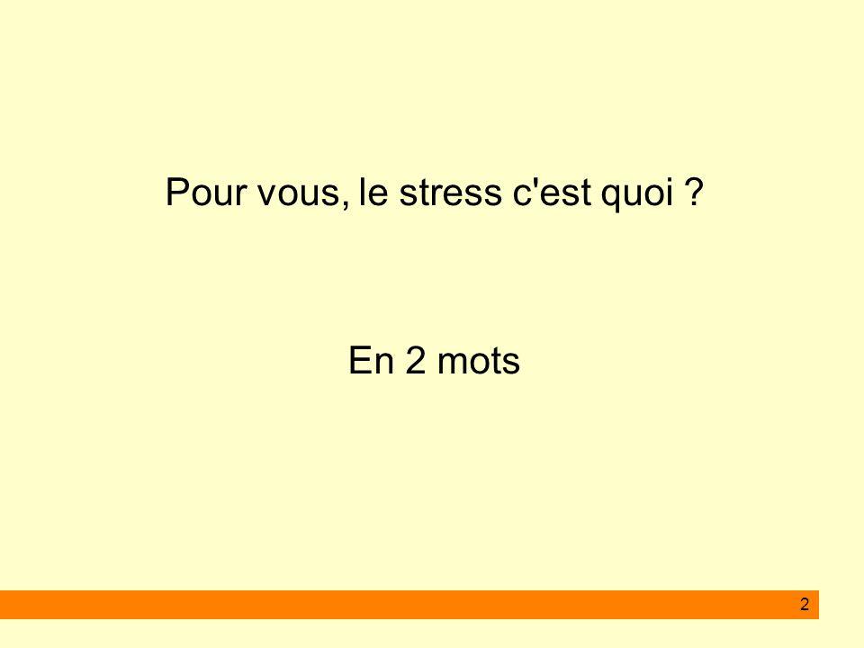 2 Pour vous, le stress c'est quoi ? En 2 mots