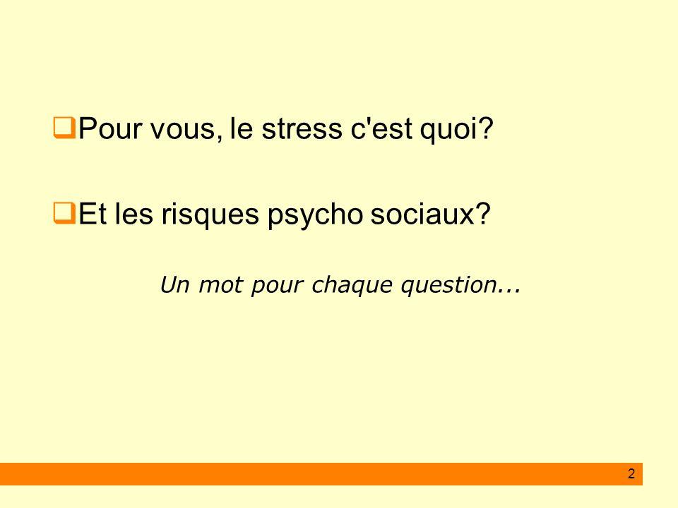 2 Pour vous, le stress c'est quoi? Et les risques psycho sociaux? Un mot pour chaque question...