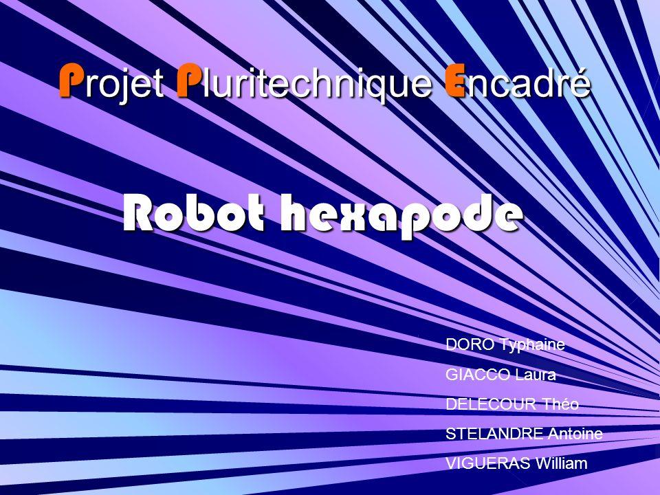 P rojet P luritechnique E ncadré Robot hexapode DORO Typhaine GIACCO Laura DELECOUR Théo STELANDRE Antoine VIGUERAS William