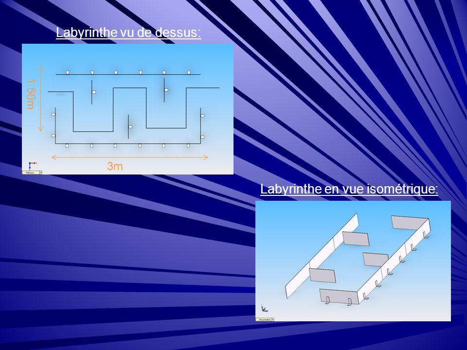 Labyrinthe vu de dessus: Labyrinthe en vue isométrique: 3m 1.50m