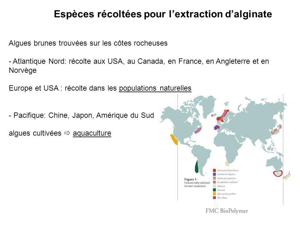 Algues brunes trouvées sur les côtes rocheuses - Atlantique Nord: récolte aux USA, au Canada, en France, en Angleterre et en Norvège Europe et USA : r