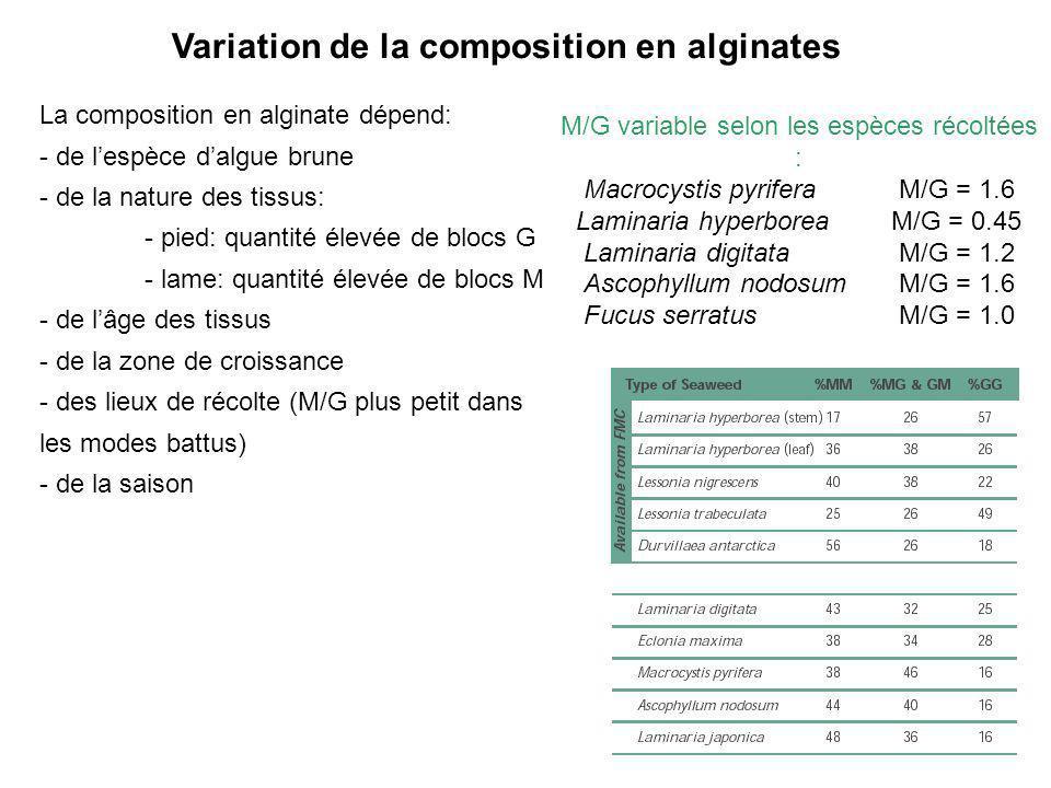 La composition en alginate dépend: - de lespèce dalgue brune - de la nature des tissus: - pied: quantité élevée de blocs G - lame: quantité élevée de