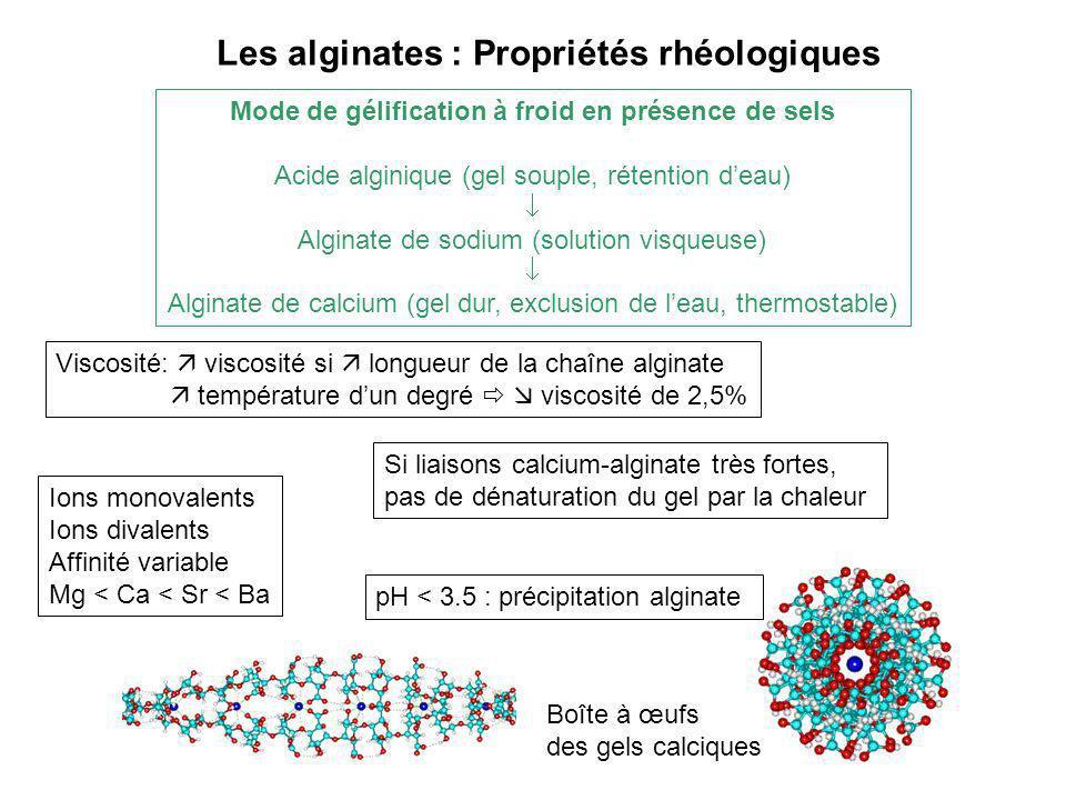 Les alginates : Propriétés rhéologiques Mode de gélification à froid en présence de sels Acide alginique (gel souple, rétention deau) Alginate de sodi