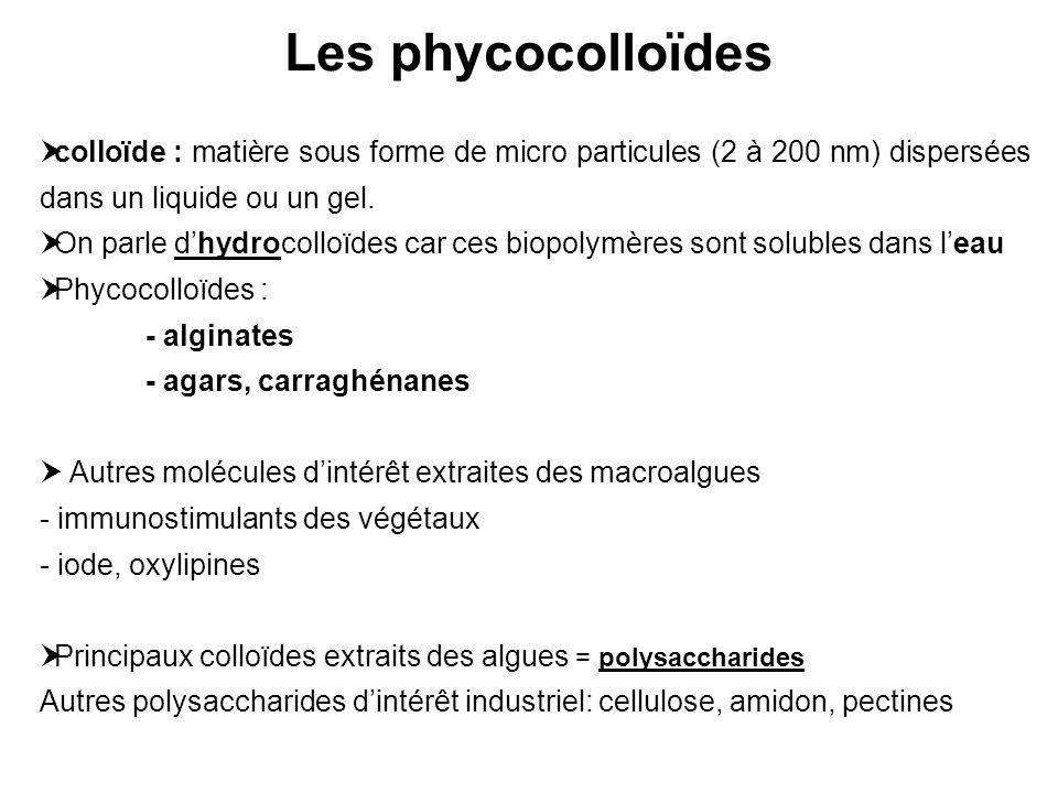 colloïde : matière sous forme de micro particules (2 à 200 nm) dispersées dans un liquide ou un gel. On parle dhydrocolloïdes car ces biopolymères son