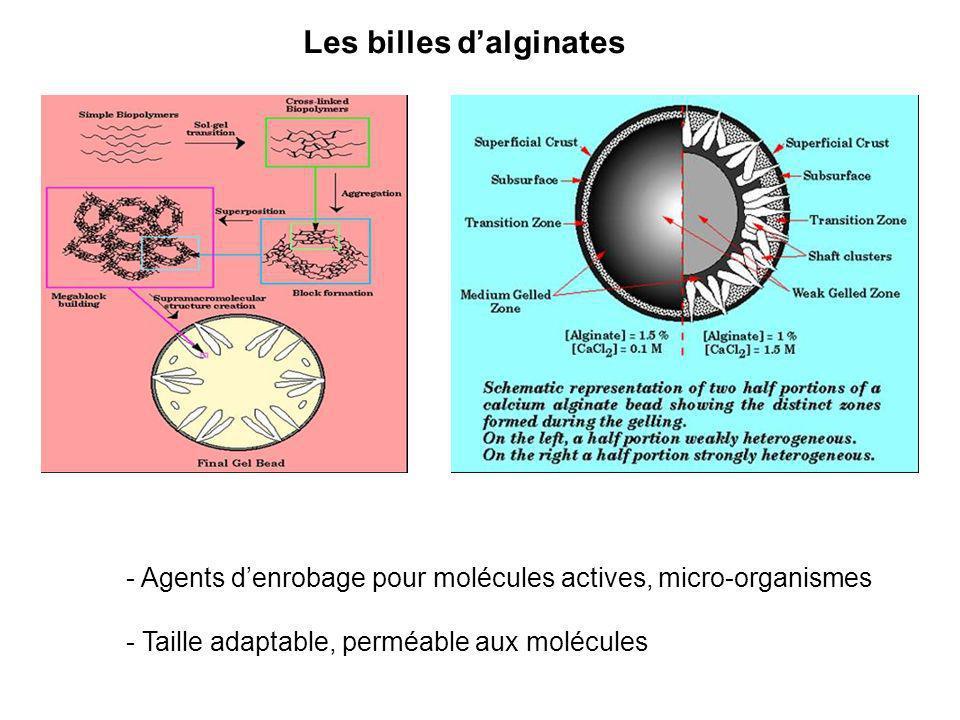 Les billes dalginates - Agents denrobage pour molécules actives, micro-organismes - Taille adaptable, perméable aux molécules