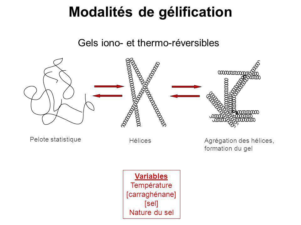 Modalités de gélification Variables Température [carraghénane] [sel] Nature du sel Gels iono- et thermo-réversibles Pelote statistique HélicesAgrégati