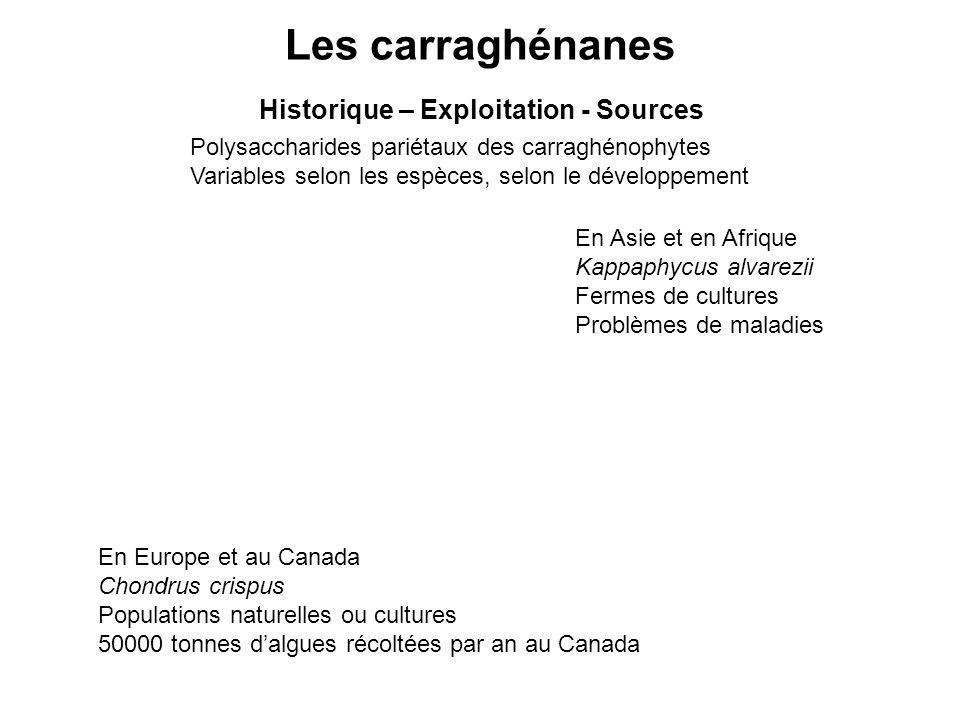 Historique – Exploitation - Sources Polysaccharides pariétaux des carraghénophytes Variables selon les espèces, selon le développement En Europe et au