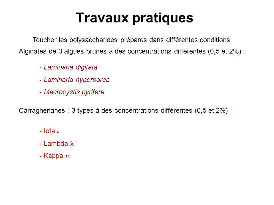 Travaux pratiques Toucher les polysaccharides préparés dans différentes conditions Alginates de 3 algues brunes à des concentrations différentes (0,5