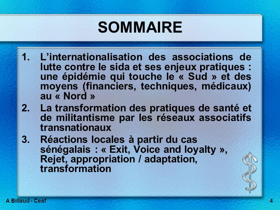 4A Billaud - Ceaf SOMMAIRE 1.Linternationalisation des associations de lutte contre le sida et ses enjeux pratiques : une épidémie qui touche le « Sud