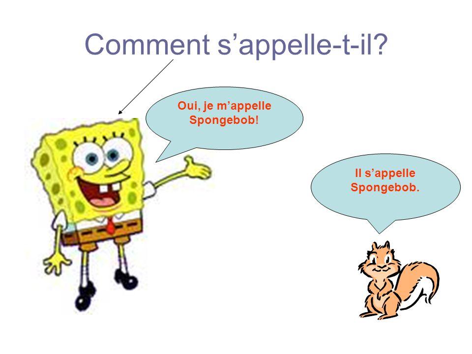 Comment sappelle-t-il? Oui, je mappelle Spongebob! Il sappelle Spongebob.