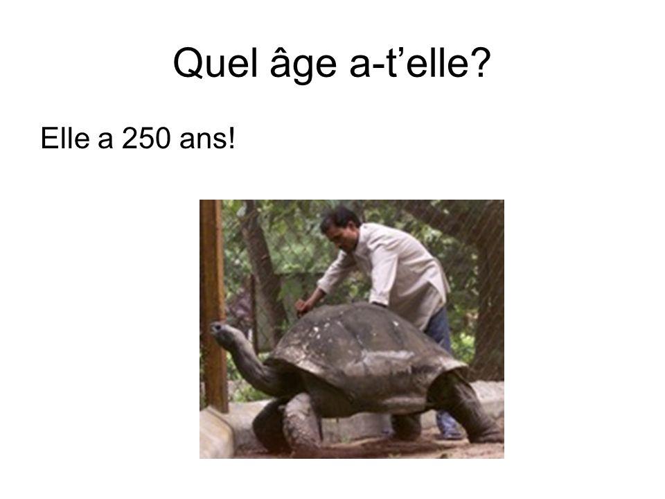 Quel âge a-telle? Elle a 250 ans!