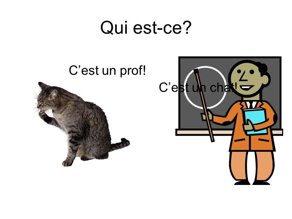 Présentation Française Qui est-ce. Comment sappelle-t-il.
