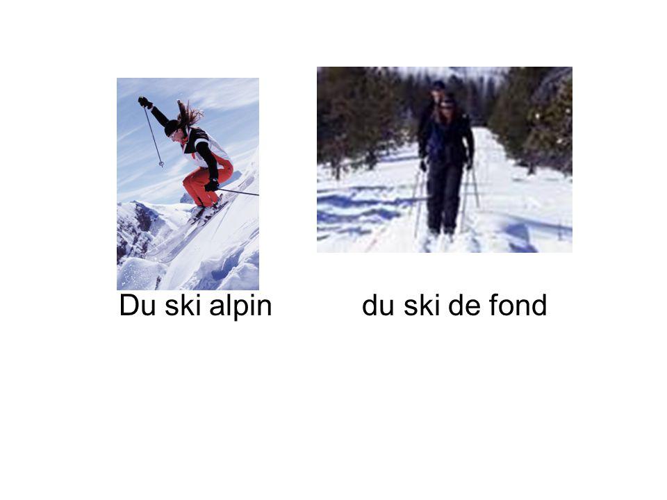 Du ski alpin du ski de fond
