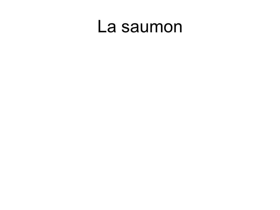 La saumon