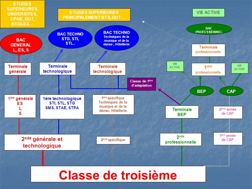 Les voies dorientation après la classe de troisième Cio Lyon Rive Gauche + Lycée Rochambeau