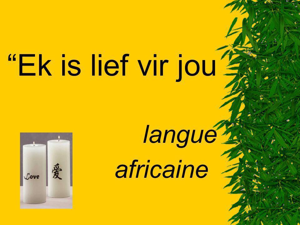 Ek is lief vir jou langue africaine