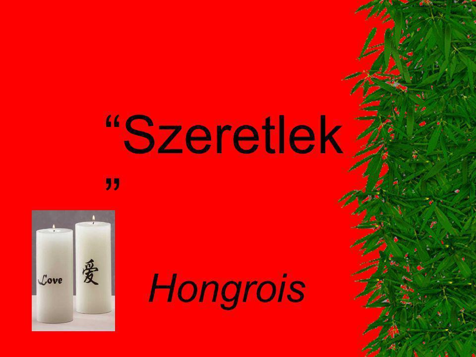 Szeretlek Hongrois