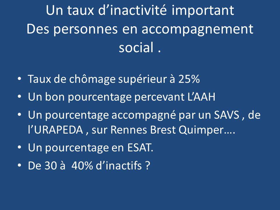 Un taux dinactivité important Des personnes en accompagnement social. Taux de chômage supérieur à 25% Un bon pourcentage percevant LAAH Un pourcentage