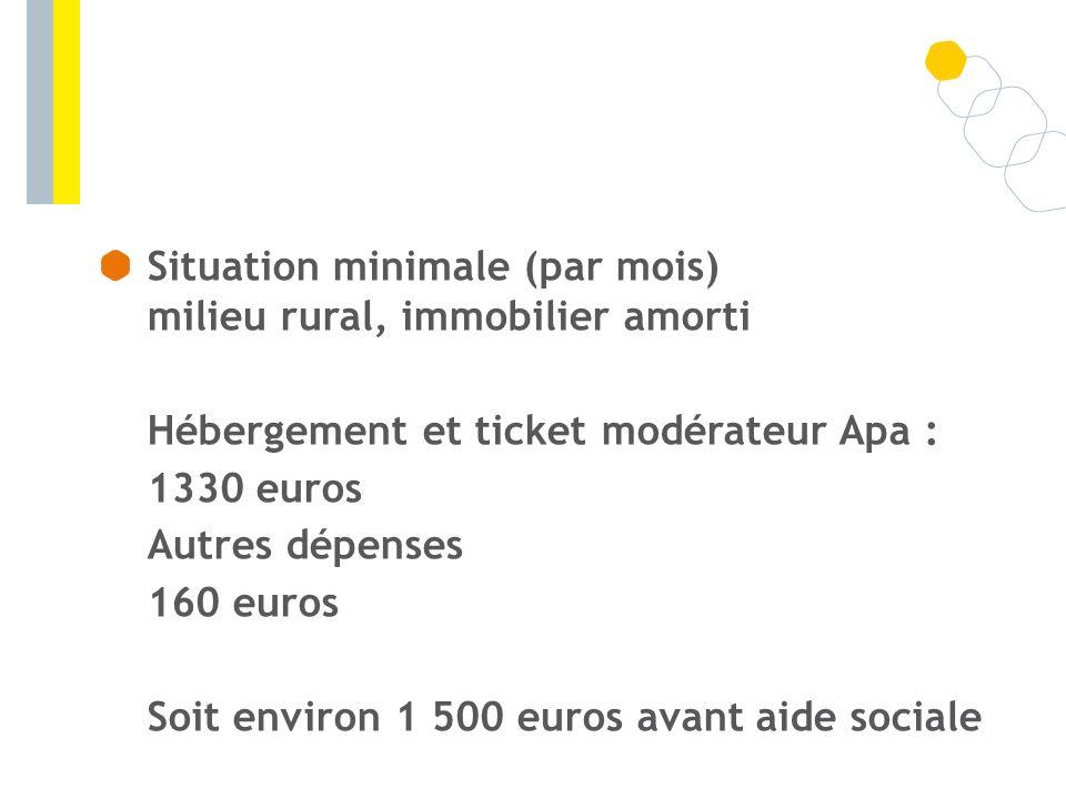 Situation minimale (par mois) milieu rural, immobilier amorti Hébergement et ticket modérateur Apa : 1330 euros Autres dépenses 160 euros Soit environ