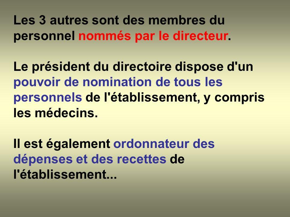 Les 3 autres sont des membres du personnel nommés par le directeur. Le président du directoire dispose d'un pouvoir de nomination de tous les personne