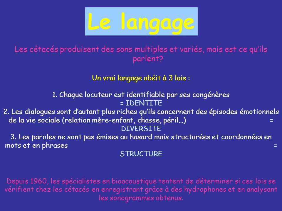 Le langage Les cétacés produisent des sons multiples et variés, mais est ce quils parlent? Un vrai langage obéit à 3 lois : 1. Chaque locuteur est ide