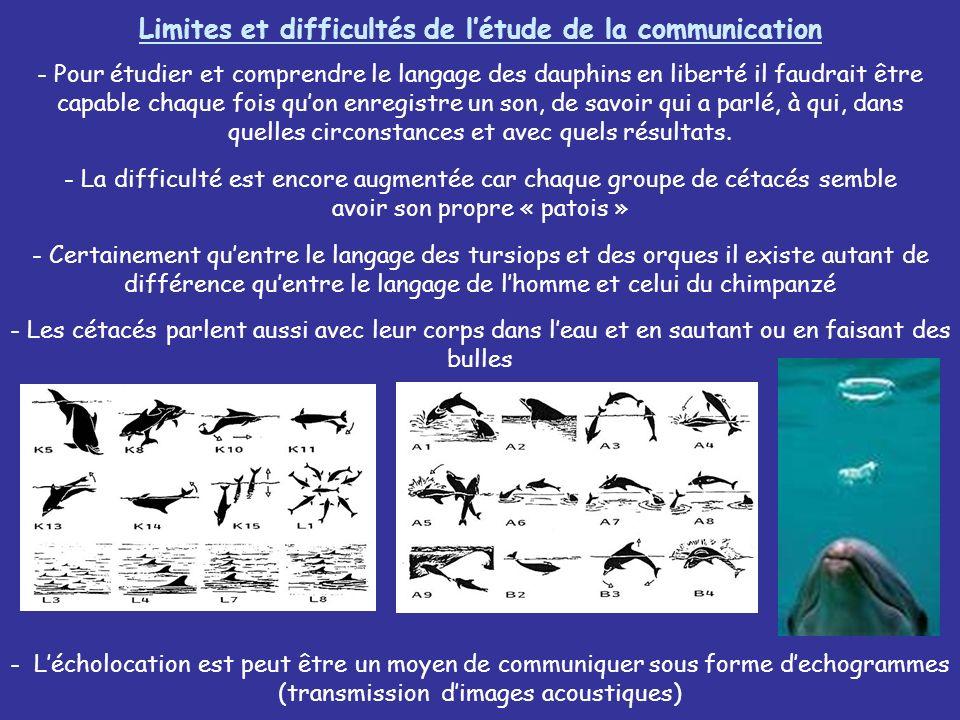 Limites et difficultés de létude de la communication - Pour étudier et comprendre le langage des dauphins en liberté il faudrait être capable chaque f