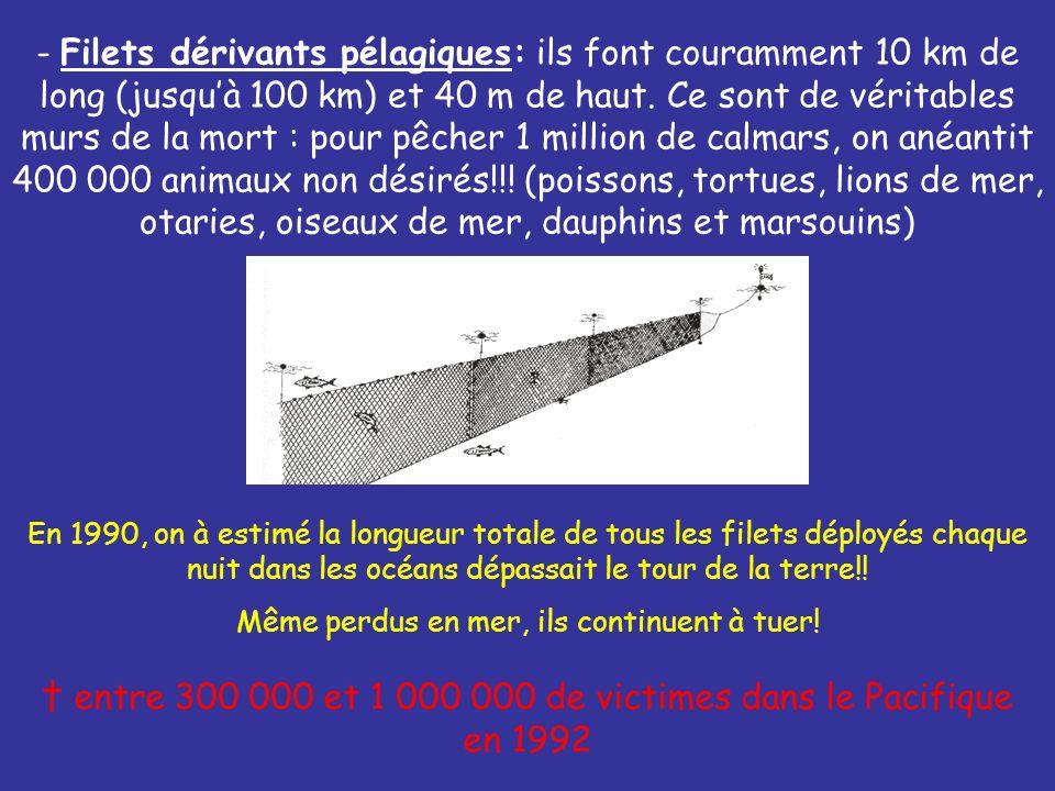 - Filets dérivants pélagiques: ils font couramment 10 km de long (jusquà 100 km) et 40 m de haut. Ce sont de véritables murs de la mort : pour pêcher