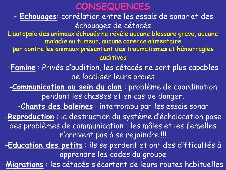 CONSEQUENCES - Echouages: corrélation entre les essais de sonar et des échouages de cétacés Lautopsie des animaux échoués ne révèle aucune blessure gr