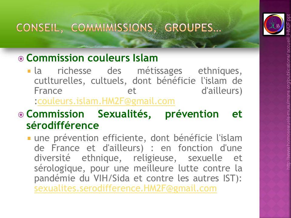 Commission couleurs Islam la richesse des métissages ethniques, cutlturelles, cultuels, dont bénéficie l'islam de France et d'ailleurs) :couleurs.isla