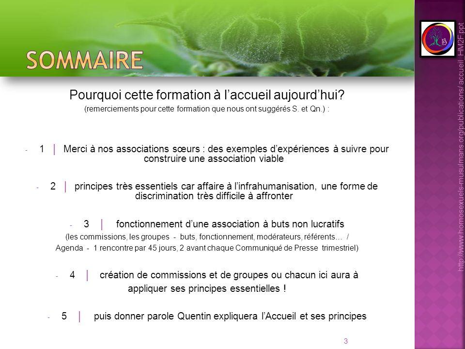 34 - Rappeler les 2 axes de travail principaux de HM2F (bien entendu rediscuter avant la première version des statuts 2010 – 2012) : - répondre aux besoins de nos membres, soumis(es) à linfrahumanisation, à la violence directe ou indirecte - Faire de HM2F une force de proposition au sein dun tissu interassociatif français fort bien structuré, qui a besoin de nous comme nous de lui Encore une fois, rien ne sera possible sans les 3 principes du Partage (entre nous) et les 4 règles de lAccueil désormais (premières minutes, elle parle de soi, je parle de HM2F, nous concluons lentretien) http://www.homosexuels-musulmans.org/publications/ accueil_HM2F.ppt