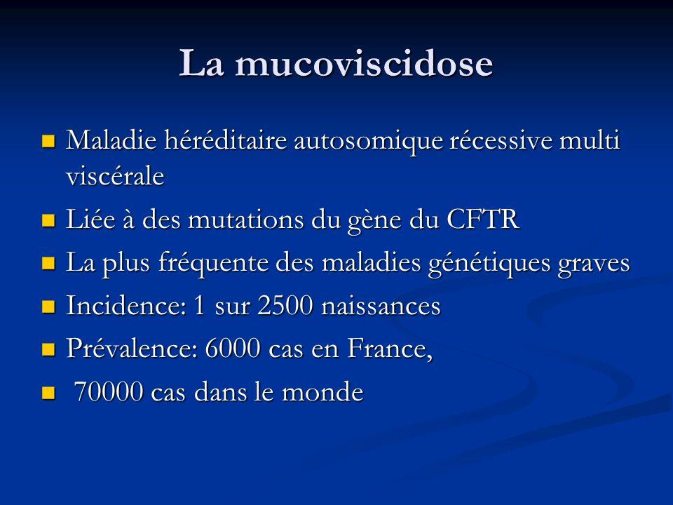 La mucoviscidose 4 % de la population générale 4 % de la population générale En France, 2 millions de porteurs sains hétérozygotes En France, 2 millions de porteurs sains hétérozygotes Le sex-ratio proche de 1 Le sex-ratio proche de 1 Maladie du tissu épithélial des glandes exocrines de lorganisme Maladie du tissu épithélial des glandes exocrines de lorganisme Augmentation de la viscosité du mucus et accumulation dans les voies respiratoires et digestives Augmentation de la viscosité du mucus et accumulation dans les voies respiratoires et digestives