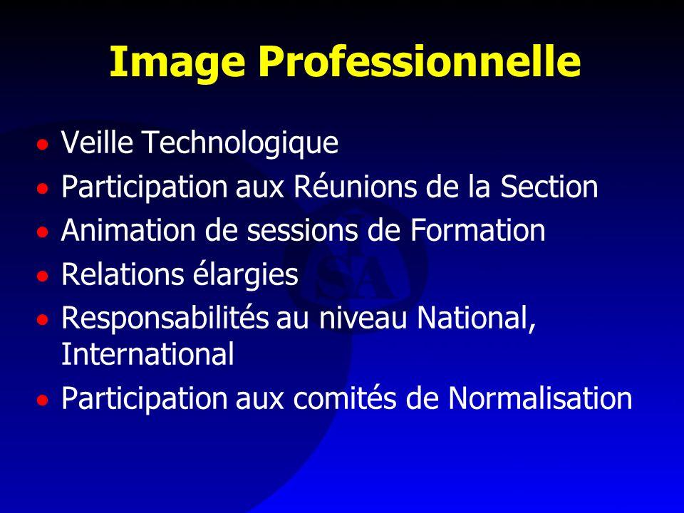 Image Professionnelle Veille Technologique Participation aux Réunions de la Section Animation de sessions de Formation Relations élargies Responsabili