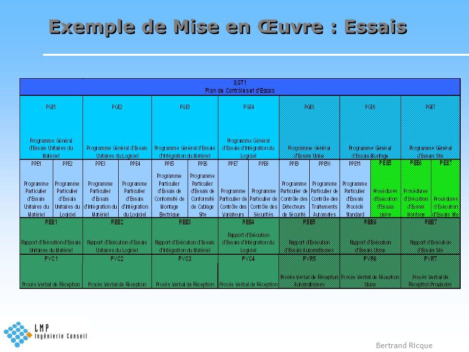 Bertrand Ricque Exemple de Mise en Œuvre : Essais
