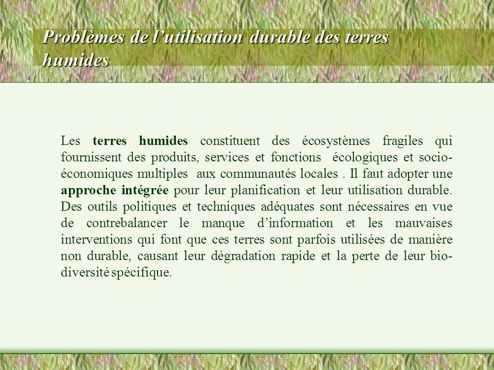 Problèmes de lutilisation durable des terres humides Les terres humides constituent des écosystèmes fragiles qui fournissent des produits, services et