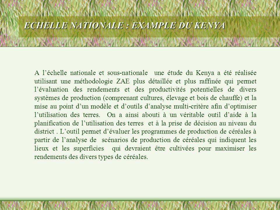 ECHELLE NATIONALE : EXAMPLE DU KENYA A léchelle nationale et sous-nationale une étude du Kenya a été réalisée utilisant une méthodologie ZAE plus déta