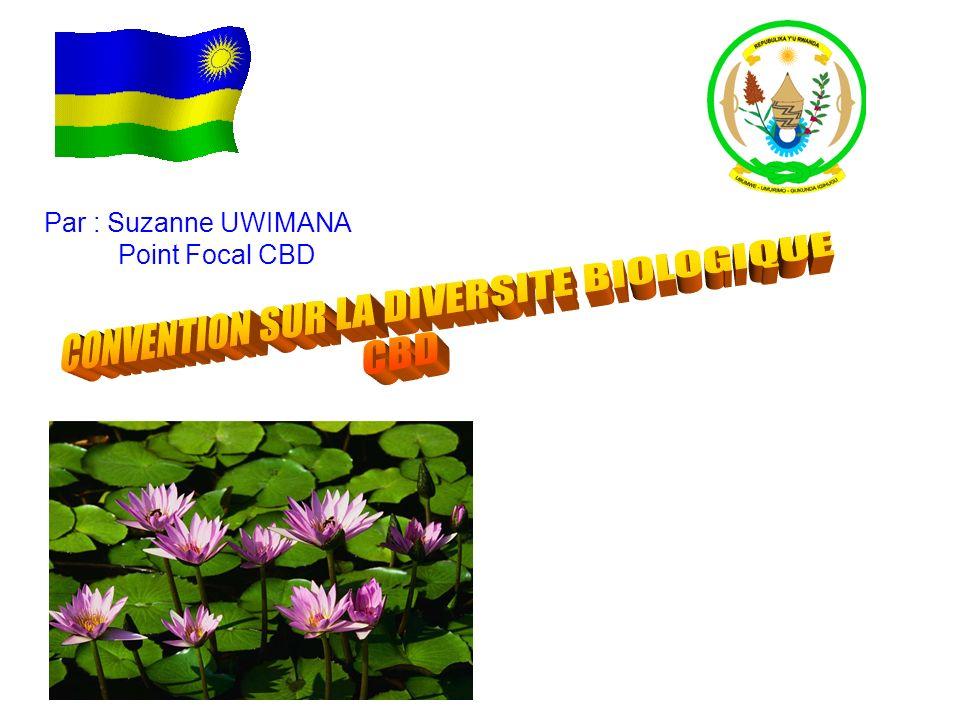 La Convention sur la Diversité Biologique (CBD) a été conclue à Nairobi en Mai 1992 au siège du Programme des Nations Unies pour lEnvironnement (PNUE).