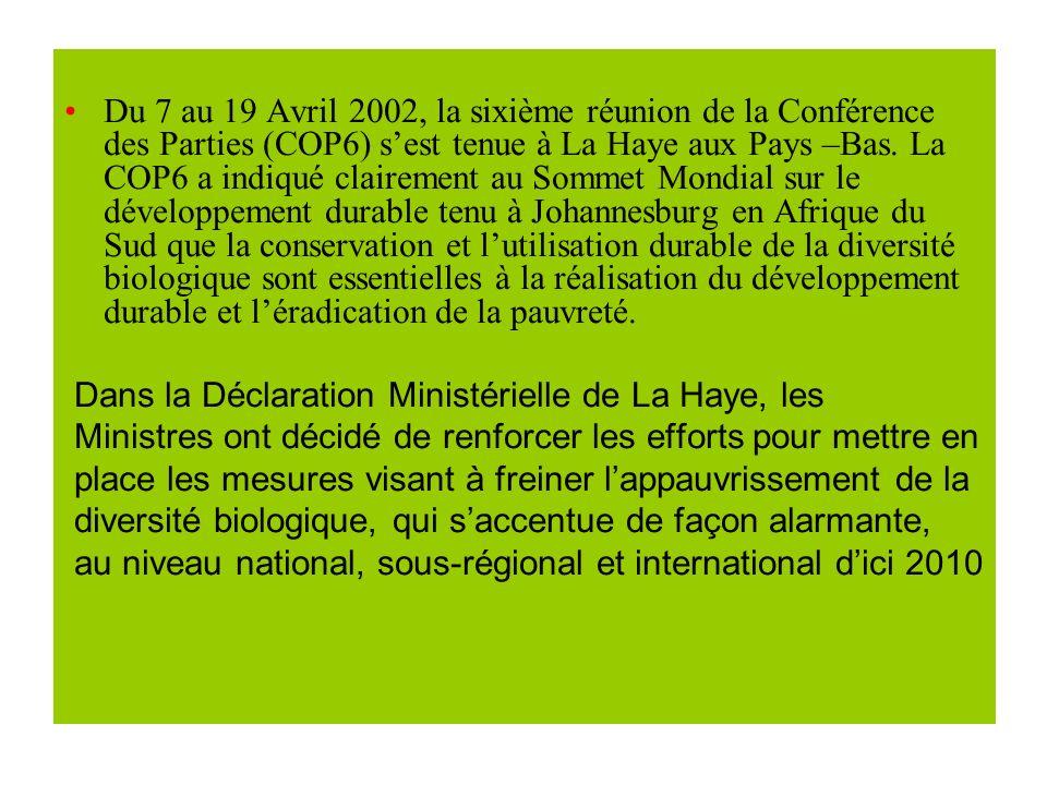 Du 7 au 19 Avril 2002, la sixième réunion de la Conférence des Parties (COP6) sest tenue à La Haye aux Pays –Bas.
