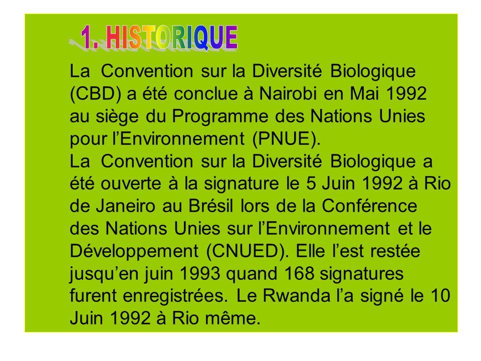 La Convention est entrée en vigueur le 29 Décembre 1993, trois mois après la déposition de la trentième ratification.
