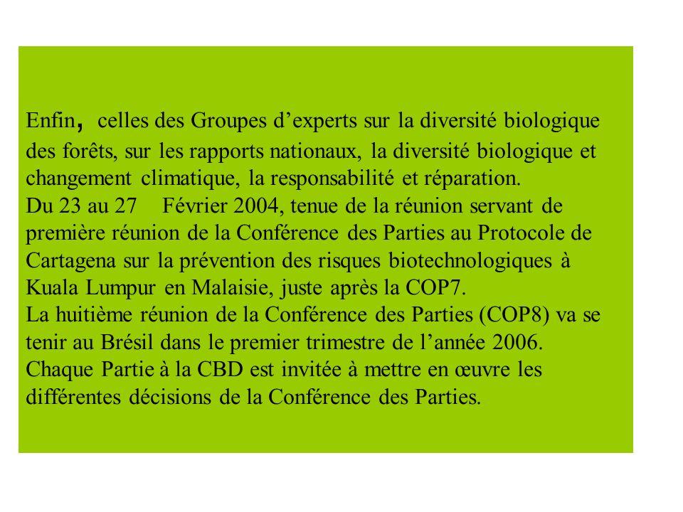 Enfin, celles des Groupes dexperts sur la diversité biologique des forêts, sur les rapports nationaux, la diversité biologique et changement climatique, la responsabilité et réparation.