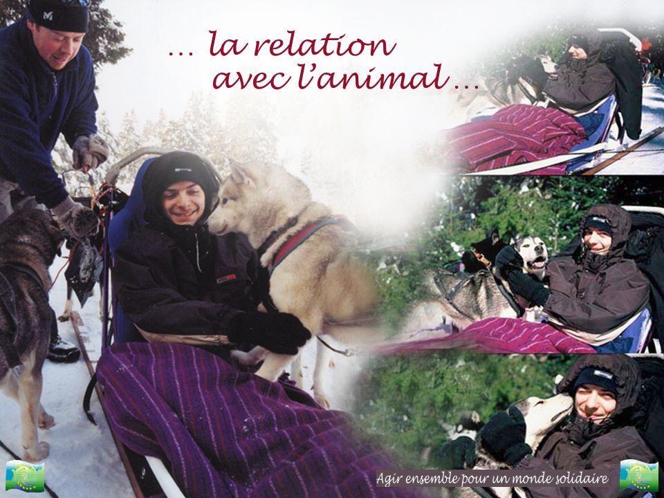 … la relation avec lanimal …