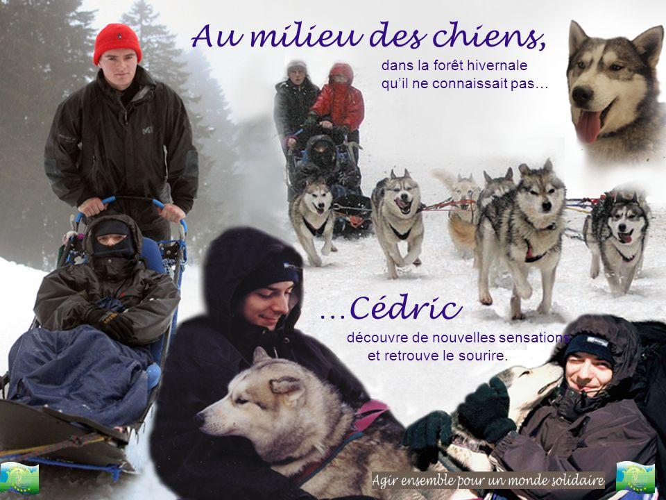 Au milieu des chiens, dans la forêt hivernale quil ne connaissait pas… …Cédric découvre de nouvelles sensations et retrouve le sourire.
