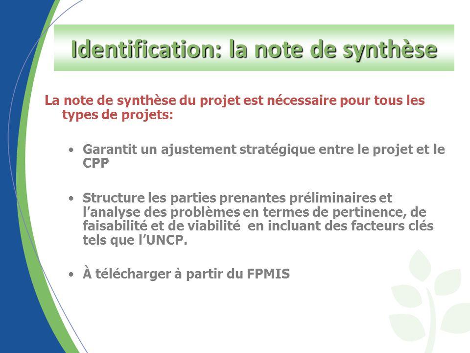 Identification Step - Concept Note La note de synthèse du projet est nécessaire pour tous les types de projets: Garantit un ajustement stratégique entre le projet et le CPP Structure les parties prenantes préliminaires et lanalyse des problèmes en termes de pertinence, de faisabilité et de viabilité en incluant des facteurs clés tels que lUNCP.