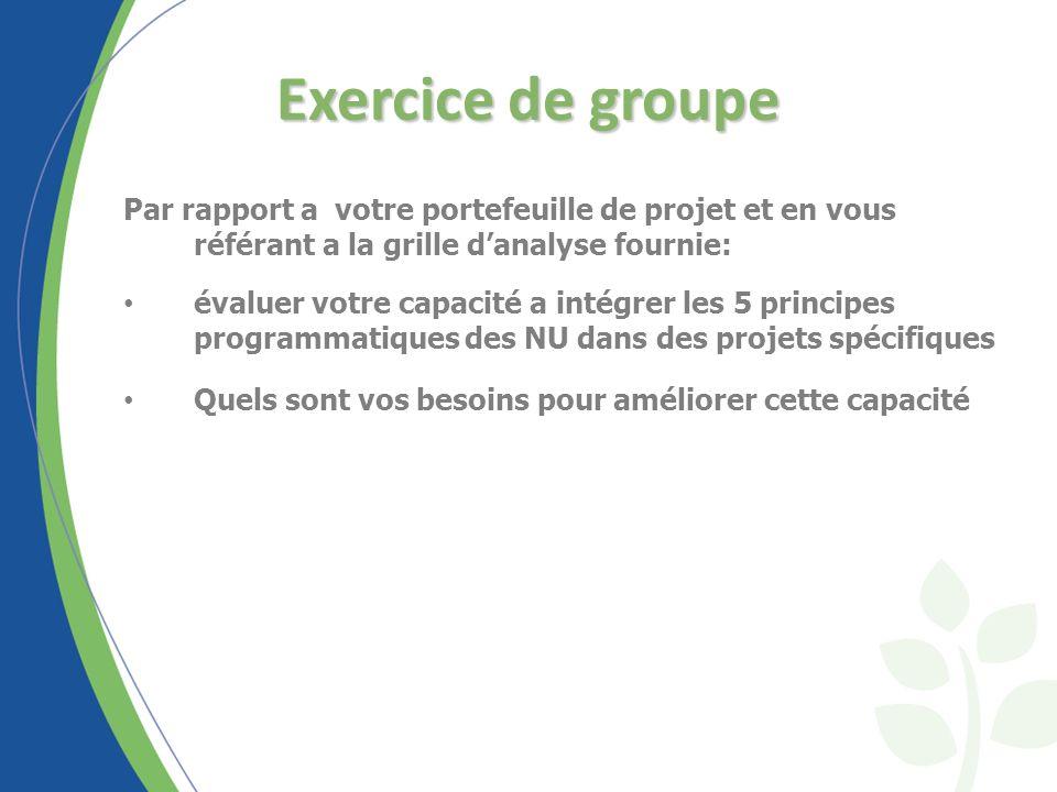 Exercice de groupe Par rapport a votre portefeuille de projet et en vous référant a la grille danalyse fournie: évaluer votre capacité a intégrer les 5 principes programmatiques des NU dans des projets spécifiques Quels sont vos besoins pour améliorer cette capacité