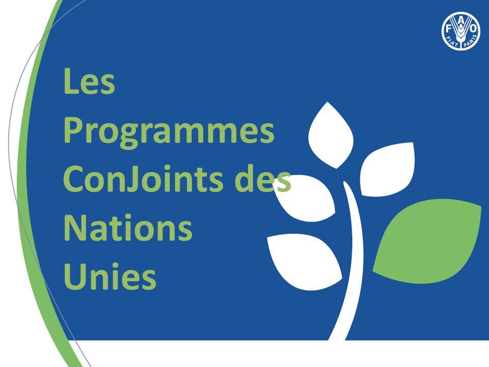 Les Programmes ConJoints des Nations Unies