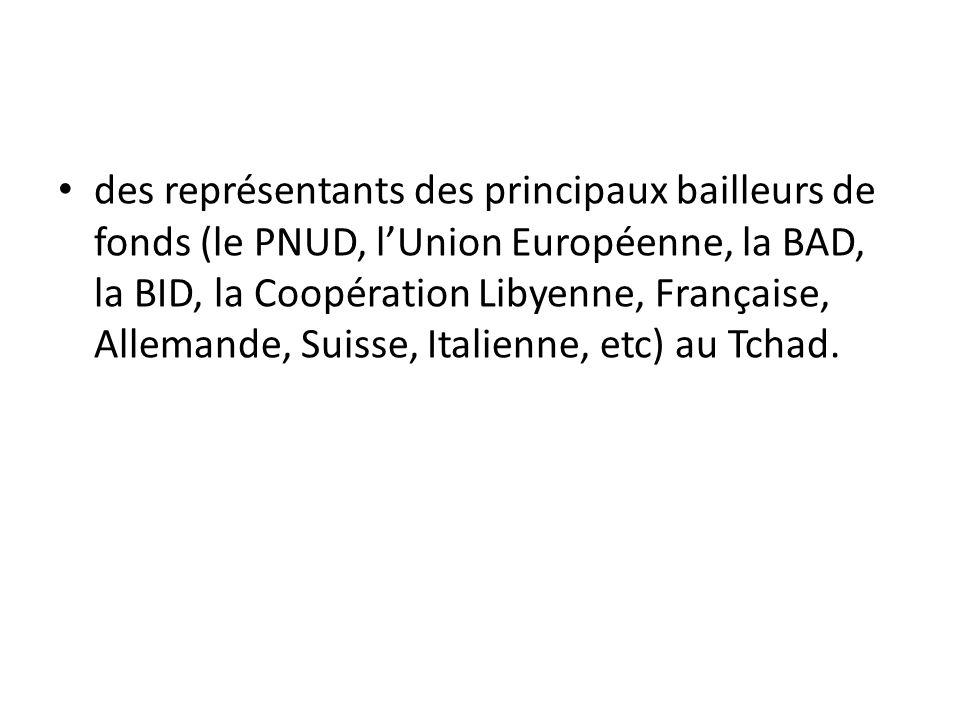 des représentants des principaux bailleurs de fonds (le PNUD, lUnion Européenne, la BAD, la BID, la Coopération Libyenne, Française, Allemande, Suisse