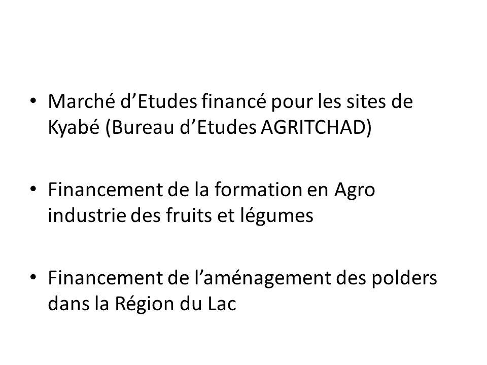 Marché dEtudes financé pour les sites de Kyabé (Bureau dEtudes AGRITCHAD) Financement de la formation en Agro industrie des fruits et légumes Financem
