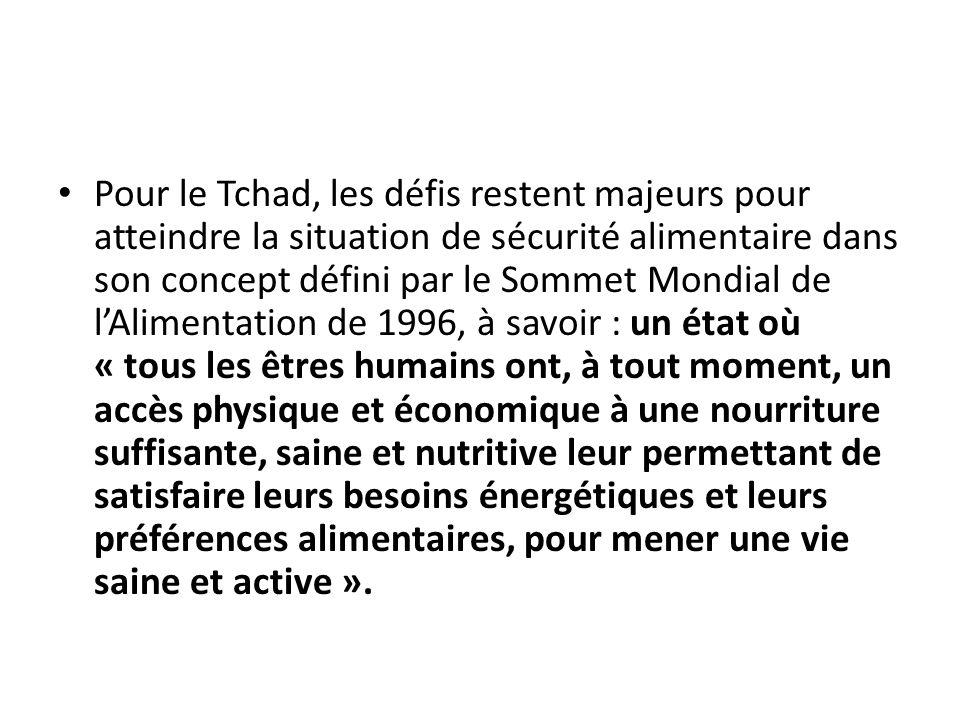 Pour le Tchad, les défis restent majeurs pour atteindre la situation de sécurité alimentaire dans son concept défini par le Sommet Mondial de lAliment