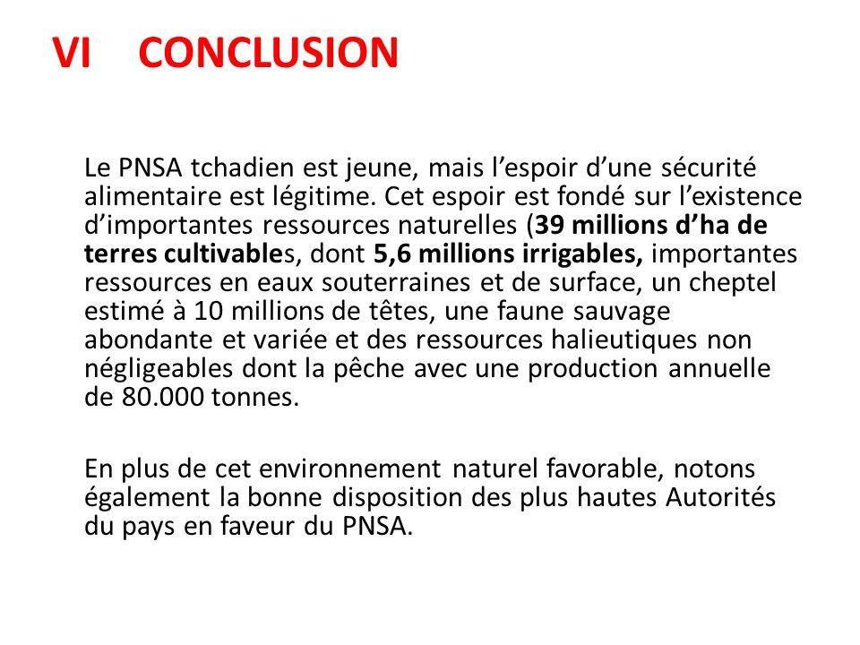 VICONCLUSION Le PNSA tchadien est jeune, mais lespoir dune sécurité alimentaire est légitime. Cet espoir est fondé sur lexistence dimportantes ressour